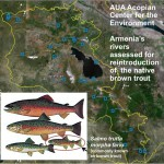AUA Acopian Center for the Environment Studies Native Fish Repopulation in Armenia