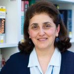AUA Librarian Hasmik Galstyan Featured in EIFL Annual Report