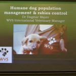 The AUA Acopian Center for the Environment Hosts a Talk on Humane and Sustainable Solutions to the Problem of Stray Dogs