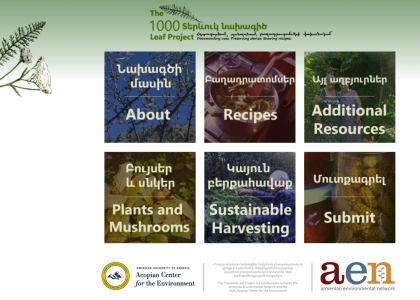The Thousand Leaf Project Website Launched Jointly by the Armenian Environmental Network and the AUA Acopian Center for the Environment