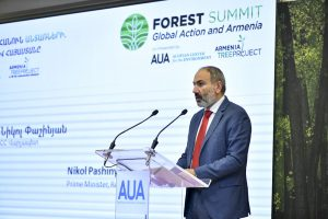 PM Nikol Pashinyan at the Forest Summit. Photo credit: www.primeminister.am