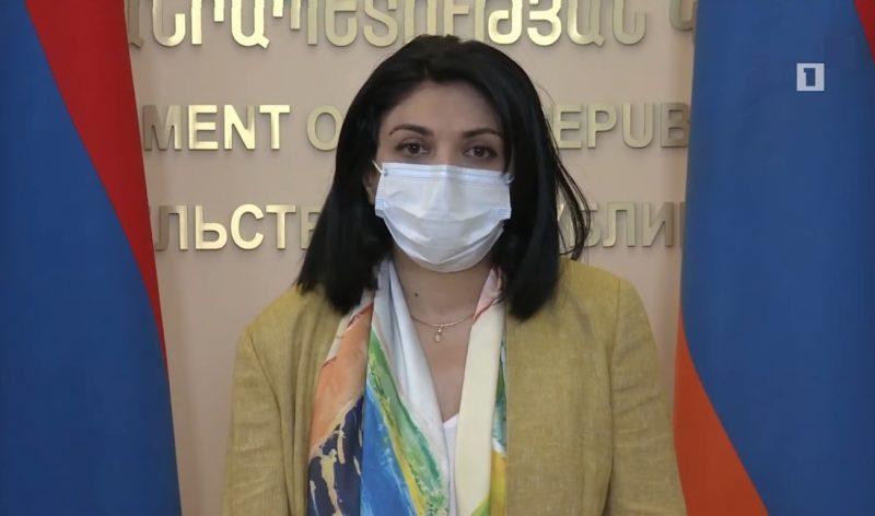 Lena Nanushyan's briefing