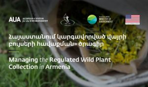 ACE Wild Plant Harvesting Workshop