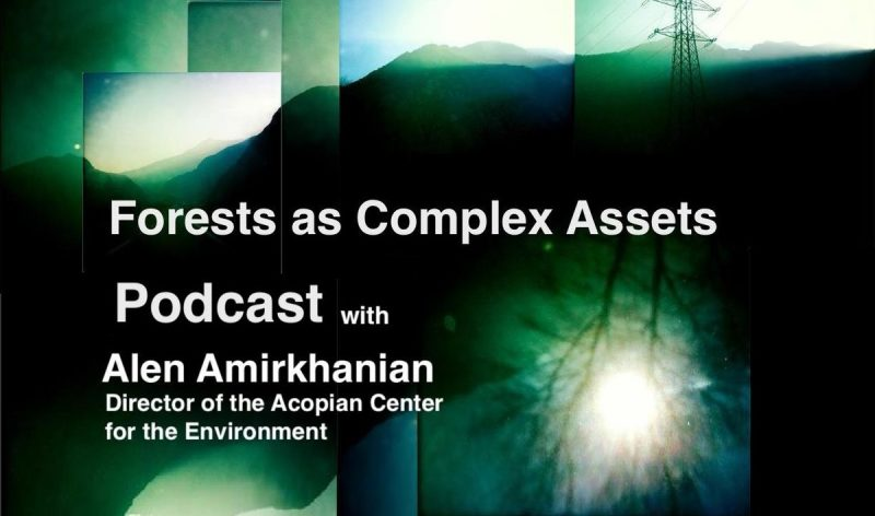 Forests as Complex Assets, EVN podcast